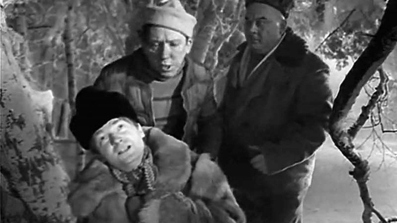 Сказки русского леса (1966)