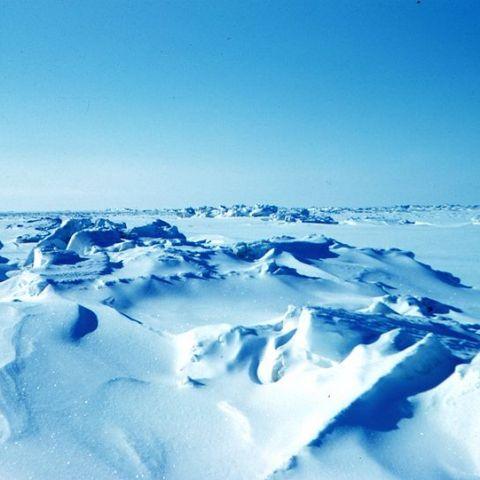 Арктика. Выбор смелых