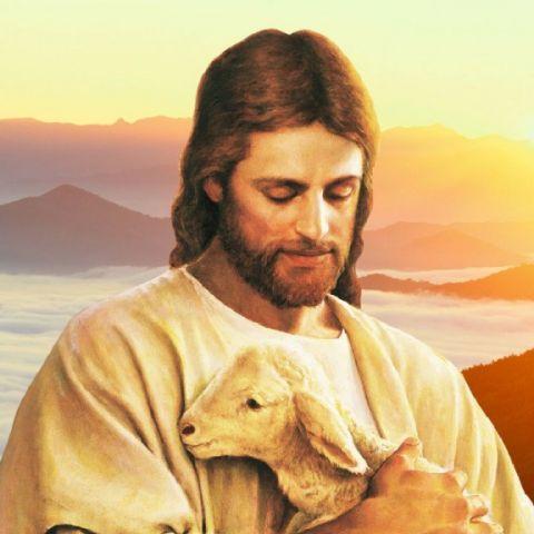 Иисус. Земной путь
